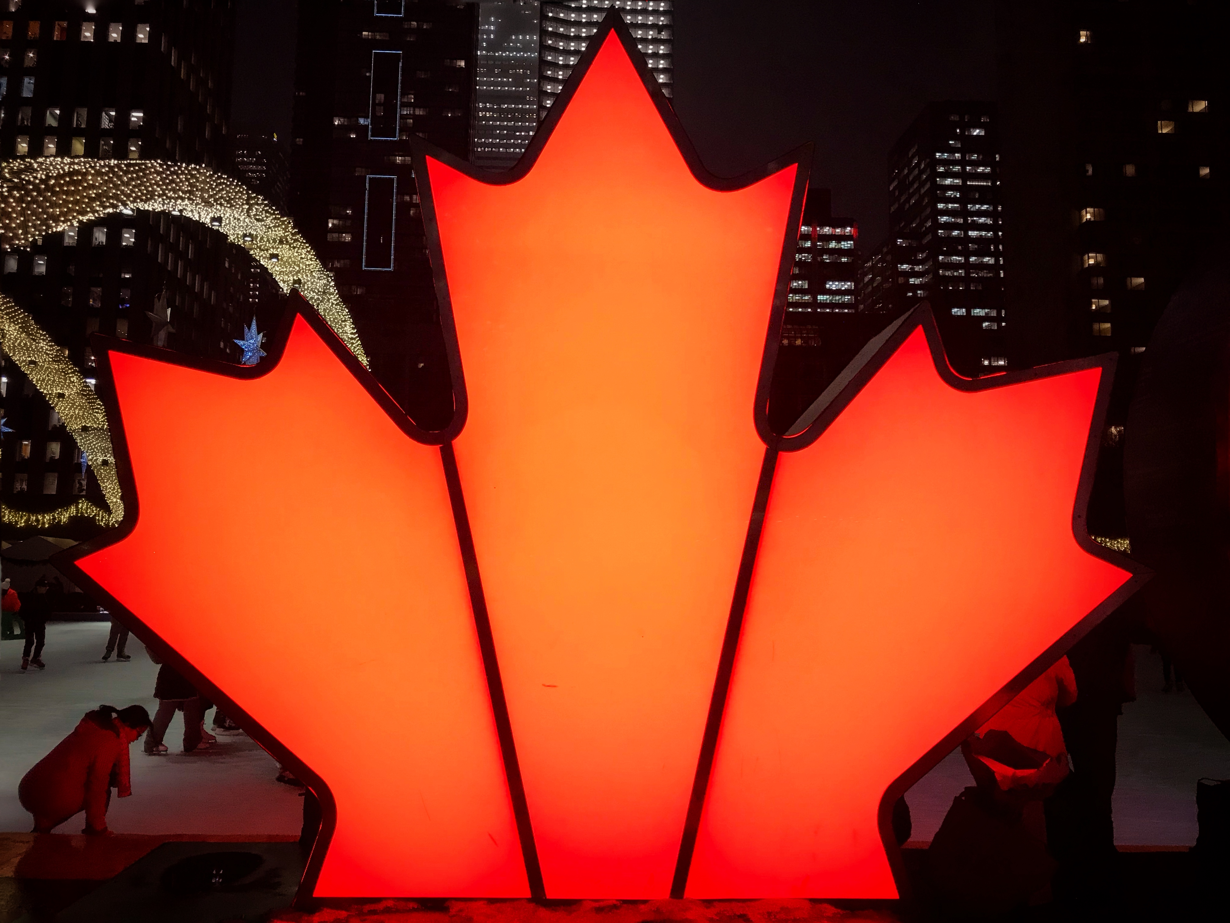 Picture of a illuminated maple leaf